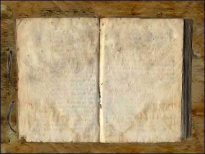 Avec quoi Harry détruit-il le journal de Jédusor ?