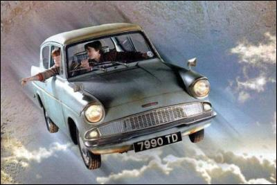 Où Fred, Georges et Ron conduisent Harry après l'avoir délivré de la maison des Dursley ?