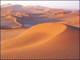 Dans ce désert, vous ne risquez pas d'en trouver un :