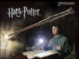 Quel sort utilise Harry en présence d'un moldu ?
