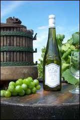 Le muscadet sur lie est issu d'un procédé de vinification. Ce vin à l'origine était appelé par les vignerons :