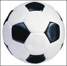 Dans quel sport peut-on retrouver ce ballon ?