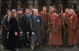 Qui est entré dans l'équipe de Quidditch des Serpentard ?