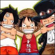 Comment s'appellent les deux frères de sang de Luffy ?