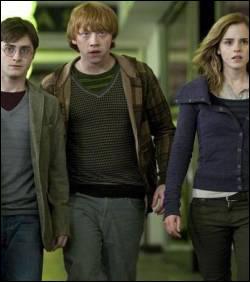 Une fois chez le frère de Dumbledore, Harry, Ron et Hermione voient apparaître quelqu'un dans un tableau : qui ?