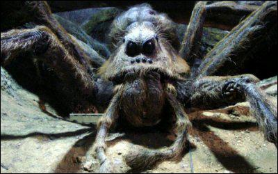 Qui est cette araignée géante ?