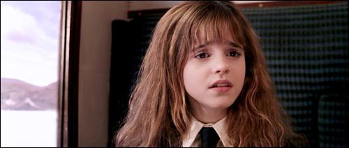 Que dit Hermione à Ron après que celui-ci ait tenté de jeter un sort à son rat, Croûtard, sans succès ?