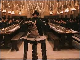 Lors de la cérémonie de Répartition, juste avant de monter sur le tabouret , Hermione se parle à elle-même. Ron ayant entendu , murmure quelque chose à Harry. Que lui dit-il ?