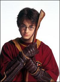 Harry reçoit un Nimbus 2000 lors d'un petit-déjeuner. Quels sont les fruits dans la corbeille à côté du Nimbus 2000 quand Harry , Ron et Hermione déballent le paquet ?