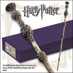 Pourquoi Harry est-il le maître de cette baguette ?