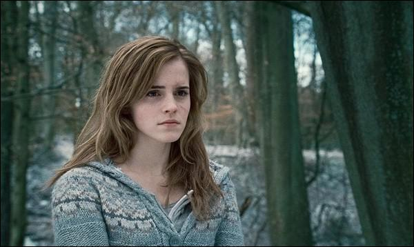 HP7P1-En qui se transforme Hermione pour aller récupérer le médaillon au ministère de la magie ?