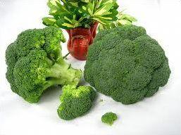 10 légumes ou plantes illustrés