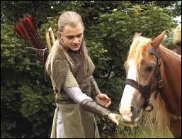 Quel est le nom du poney de Sam ?