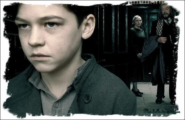 Deuxième année : sans le savoir, que va détruire Harry en transperçant le carnet de Tom Jedusor ?