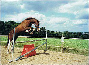 Pour sauter un obstacle comment doit-on se positionner devant l'obstacle ?