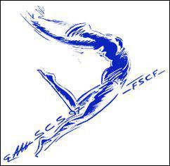 Quelle est la marque de gymnastique la plus célèbre ?