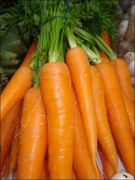 On cultive aussi les carottes, les concombres, les aubergines et les épinards.
