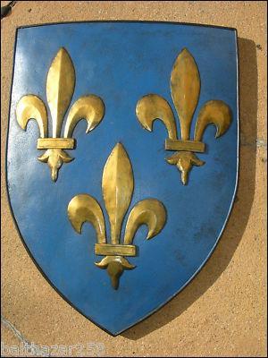 La fleur de lys devient l'emblème de la monarchie française dès le règne de de Clovis.