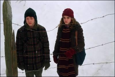 Quelle matière Hermione conseille-t-elle à Ron d'étudier en quatrième année ?