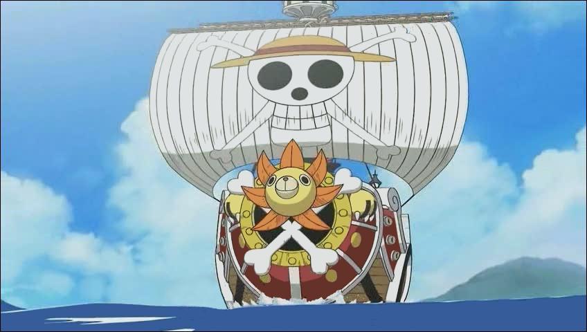 Qui a protégé le Thousand Sunny durant l'entrainement de l'équipage ?
