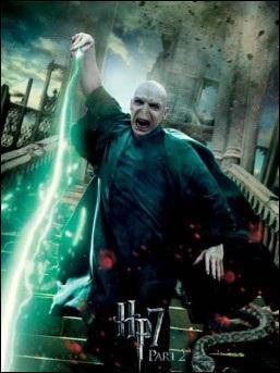 Pourquoi Voldemort protège-t-il Nagini ?