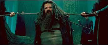 Que regarde Hagrid ?