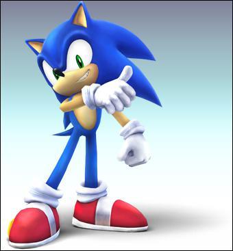 Qui est l'ami de Sonic ?