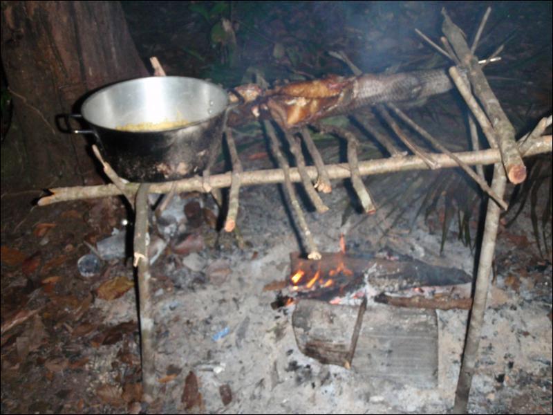Très utile, en forêt, pour faire cuire le poisson, ce ...