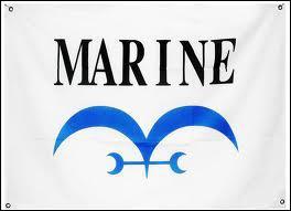 Le drapeau de la marine représente :