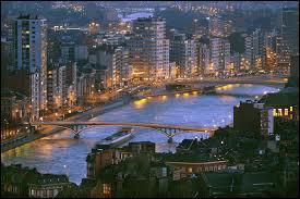 Trouvez le(s) pays traversé(s) par la Meuse (950 km) :