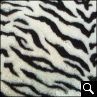 A quel animal appartient ce pelage ?