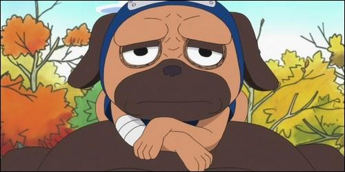 """Dans """"Naruto"""", à qui appartient ce chien nommé Pakkun ?"""
