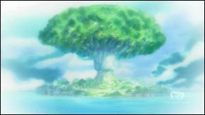 Quelle est l'île sur laquelle Robin est née ?