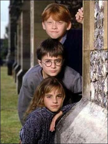 Où Harry voit-il Hermionne pour la première fois ?
