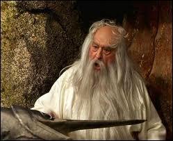 Qui interprète Panoramix dans ' Astérix et Obélix contre César' ?