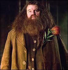 Hagrid veut voir les enfants de Harry et de Ron