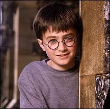 Qui sont les enfants de Harry ?