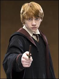 De qui est amoureux Ron (sauf dans le film 6) ?