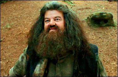 De qui est amoureux Hagrid ?