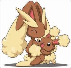 Qui sont ces mignons petits Pokémons ?