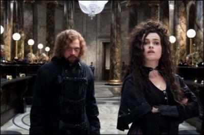 Lors de l'escapade à Gringotts , Ron se déguise en Dragomir Despard, qui est un ami de Bellatrix venu exprès pour voir le nouveau régime de la Grande-Bretagne. De quel pays Hermione dit-il qu'il vient ?