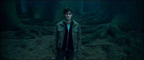 Dans la forêt Interdite, Hagrid est surpris par le fait que Harry se livre à Voldemort et crie. Quel Mangemort le force à se taire avec un coup de baguette magique ?