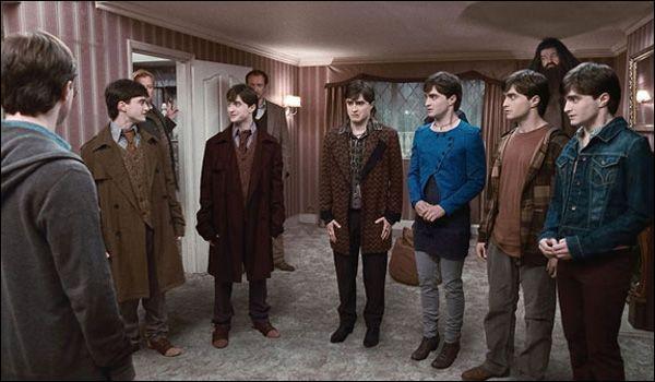 En plaisantant, Fred dit qu'il redoute que lui et les autres n'arrivent plus à redevenir eux-mêmes après avoir bu le Polynectar pour prendre l'apparence de Harry. Comment décrit-il alors Harry ?