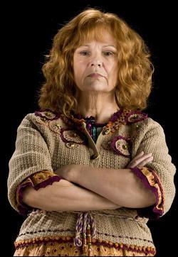 Au Terrier, Molly demande à Harry de venir avec elle identifier une chaussette solitaire, pour pouvoir lui parler. Les symboles sur la chaussette représentent quelle équipe de Quidditch ?