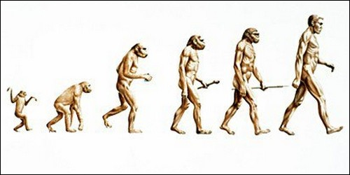 """Qui est le père de """"La Théorie de l'évolution"""" ?"""