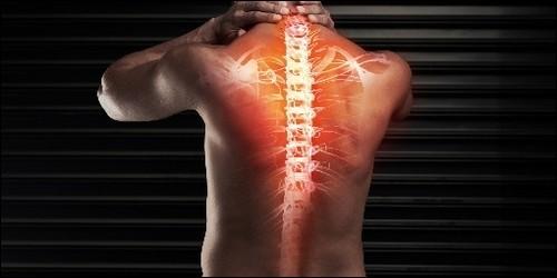 Par quel os se termine le colonne vertébrale ?