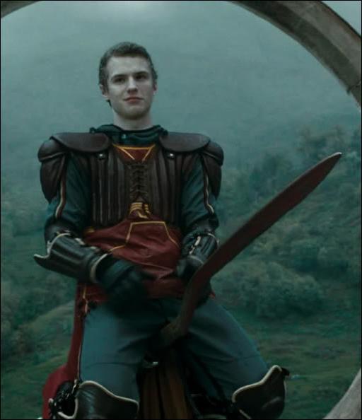 Dans le cinquième tome, Cormac McLaggen n'a pas pu passer les sélections de l'équipe de Quidditch de Gryffondor car il se trouvait à l'infirmerie. Qu'avait-il parié pouvoir manger ?