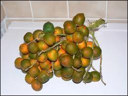 Ce fruit qui pousse en grappes est le :