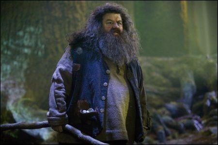 Dans le 4, de qui Hagrid tombe amoureux ?