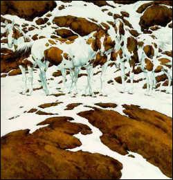 Combien de chevaux voyez-vous ?